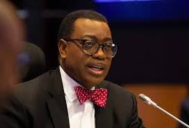 Despite Paying High Taxes, Nigerians Still Provide Water, Electricity For Themselves— Akinwumi Adesina