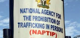 NAPTIP reunites trafficked victim with family 20 years after