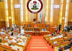 Senate Demands More As FG Approves N5bn Bailout For Aviation Sector