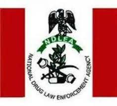 How My Father's Burial Turned Me Into A Drug Courier- Man Arrested With 781 Grammes Of Heroine At Abuja Airport