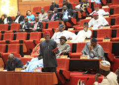 National Assembly Begins Review of Acts Establishing Agencies