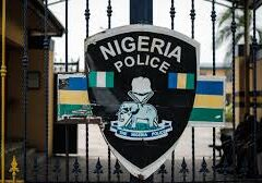 Police Arrested Over 287 Suspected Rapists In Katsina In 2020 — Official