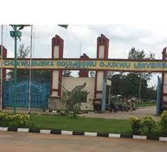 Assailants kill 9 persons as fear grips Ojukwu Varsity town in Anambra