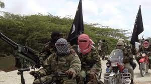 Boko Haram invades another Yobe town