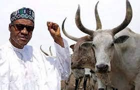 """President Muhammadu Buhari has approved recommendations of a committee to review """"with dispatch,"""" 368 grazing sites, across 25 states in the country"""